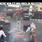 """Servizio Le Iene """"Il nostro racconto della guerra tra Israele e Palestina"""""""